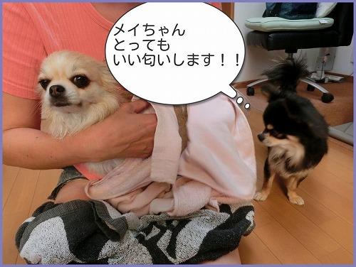 朝シャン0725