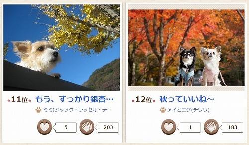 秋コン2014の2