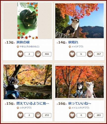秋コン2014