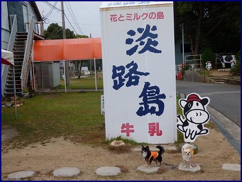 淡路島牧場 (1)