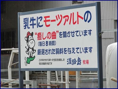 淡路島牧場 (2)