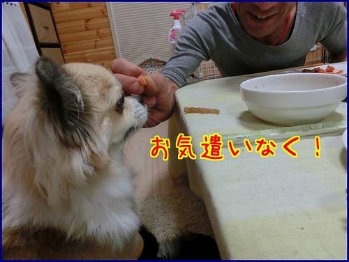 mayuトコ2014 (3)