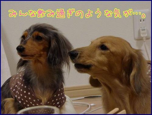 mayuトコ2014 (4)