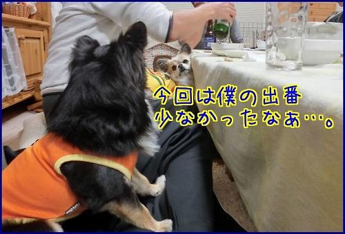 mayuトコ2014 (6)
