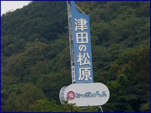 津田の松原 (2)