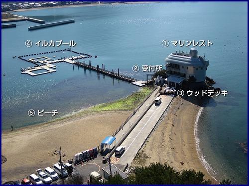 日本ドルフィン (1)