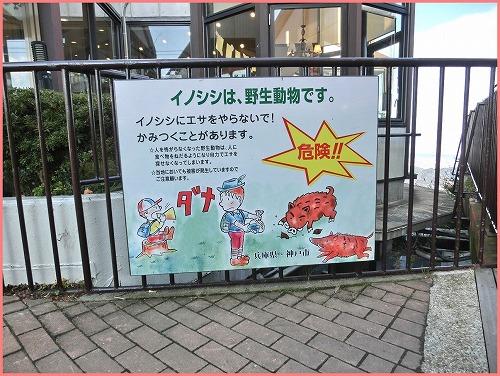 六甲ガーデン2014 (4)