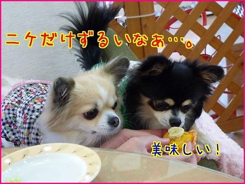 wan-po2014nike (11)