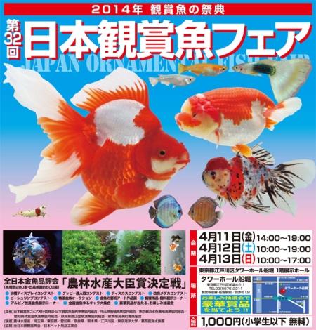 2014観賞魚の祭典