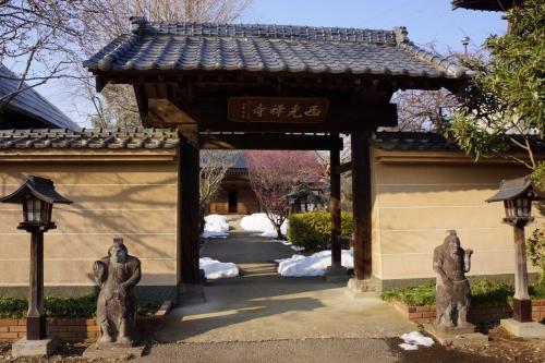 2西光寺 (1200x800)