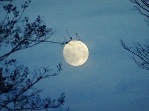 4満月 (1200x900)
