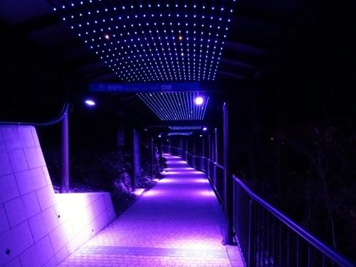 3渡り廊下? (1200x900)