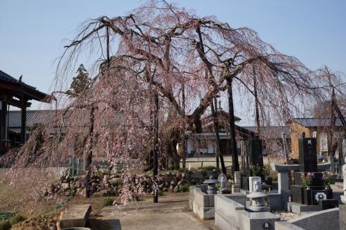 5霊厳寺 (1200x800)
