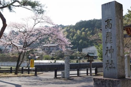 1高麗神社 (1200x800)