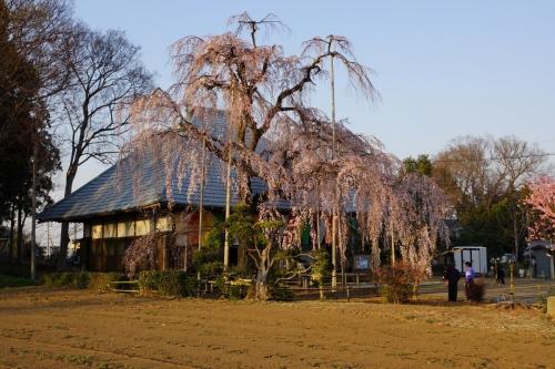9慈眼寺 (1200x800)