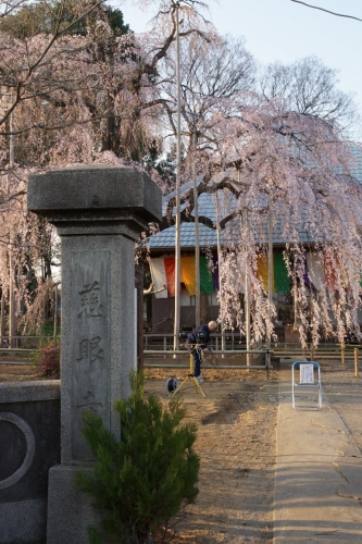 7慈眼寺 (800x1200)
