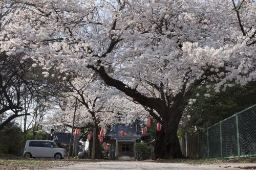 4松山神社 (1200x800)