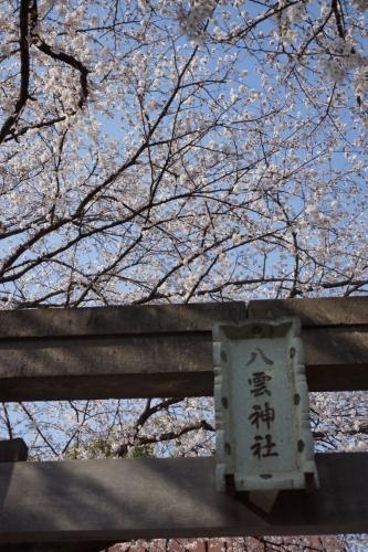 2八雲神社 (800x1200)