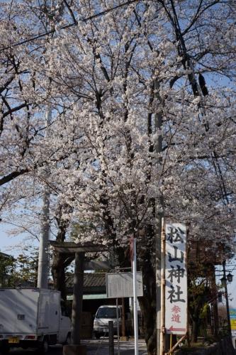1八雲神社 (800x1200)