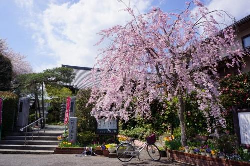 1天然寺 (1200x800)