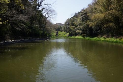 3丹後沢公園 (1200x800)