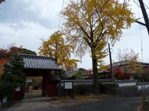 1本光寺 (1200x900)