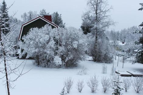 Talvimaisema 15.03.2014
