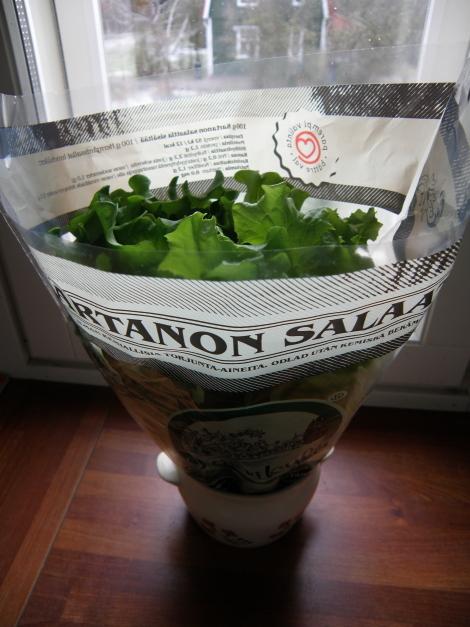 Salaatti