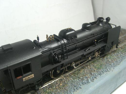 珊瑚模型 D50