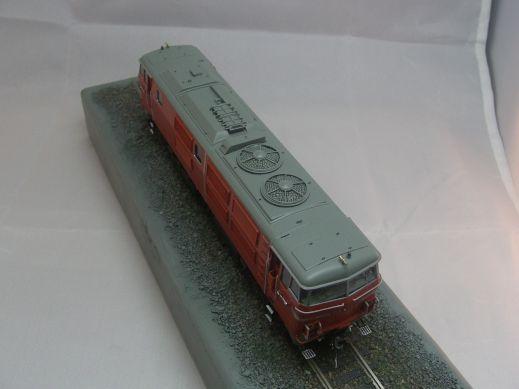 珊瑚模型 DD54