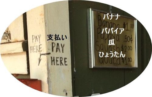 IMG_3145-001mojiwa.jpg