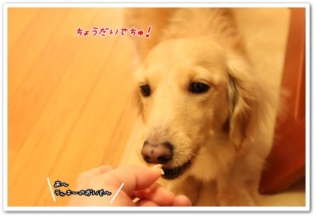 2014_02_23_1330-2.jpg