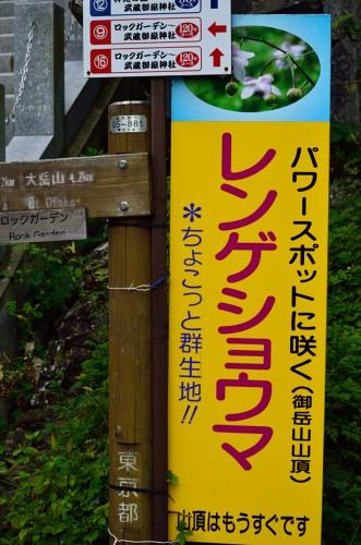 _御岳山DSC_0196