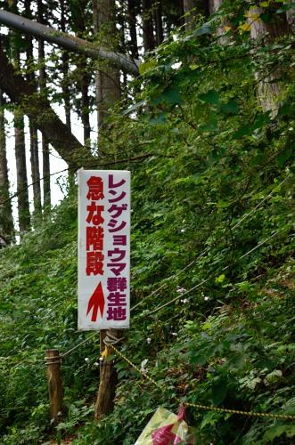 _御岳山DSC_0067