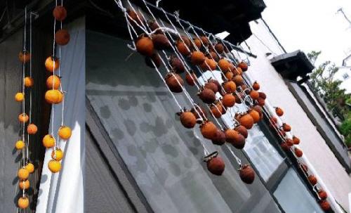 吊るし柿11