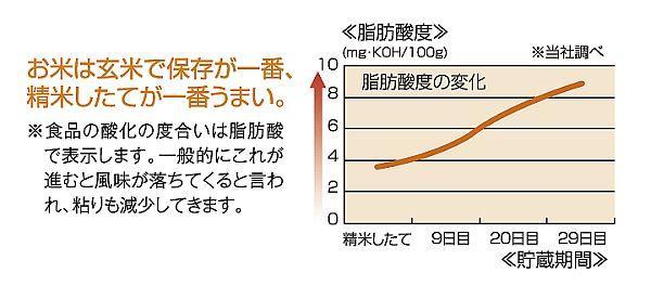 白米の酸化率