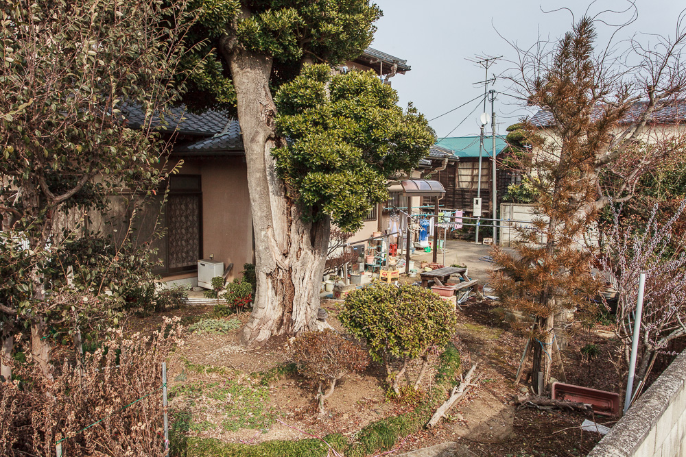 140220石岡 (1 - 1)-11