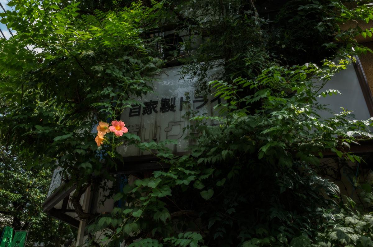 140818京島 (1 - 1)-34