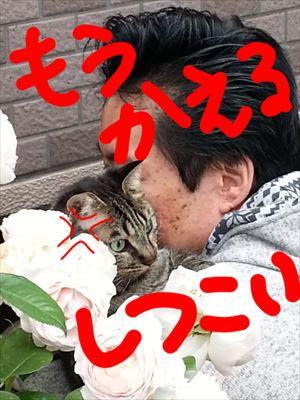 20140519yoshi02_R.jpg