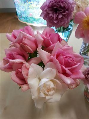 20140629ポンパドールの花束01_R