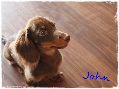 John☆