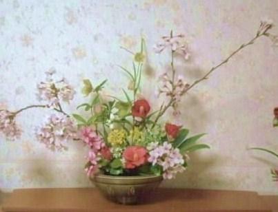 桜・作品1