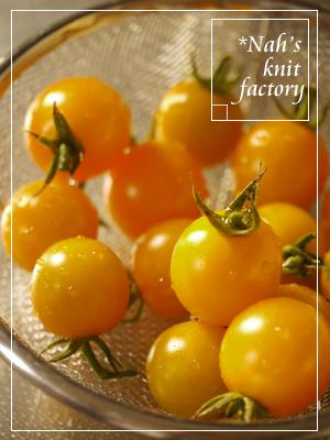tomato2014-11.jpg