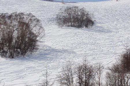 スキー!!1