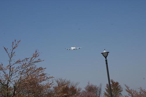 A380-0412-116.jpg