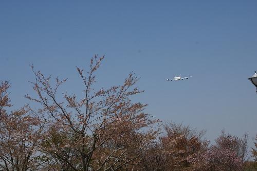 A380-0412-117.jpg