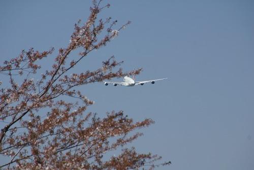 A380-0412-118.jpg