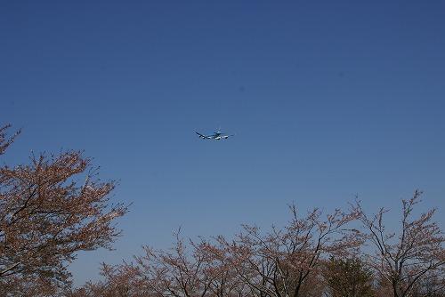 A380-0412-31.jpg