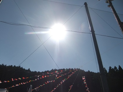 tahara2.jpg