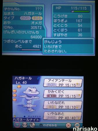 2014-11-04_3.jpg
